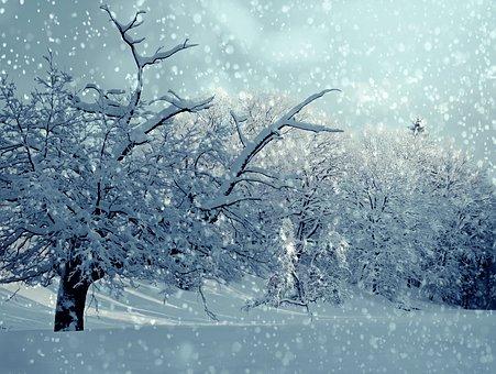 この画像には alt 属性が指定されておらず、ファイル名は 冬.jpg です